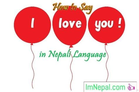 essay about importance of english language in nepal today